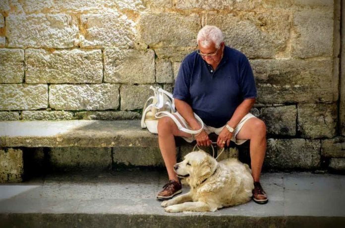 Animal lovers are never lonely