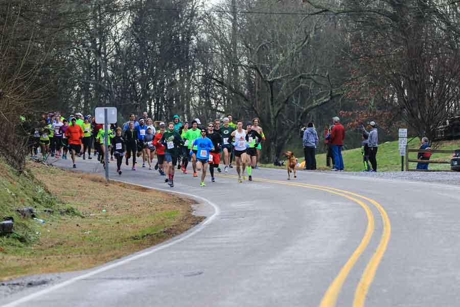 Ludivine Dog Runs marathon