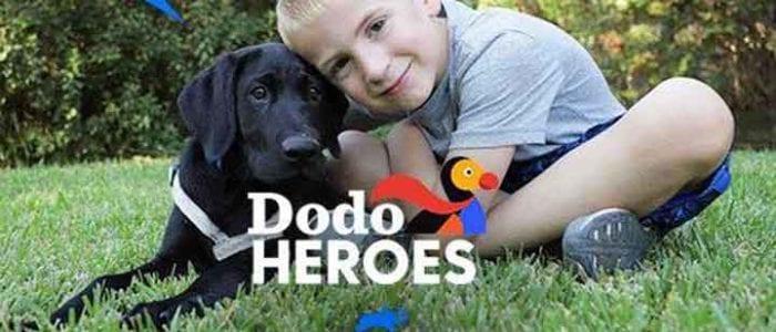 aspca Roman McConn save dogs