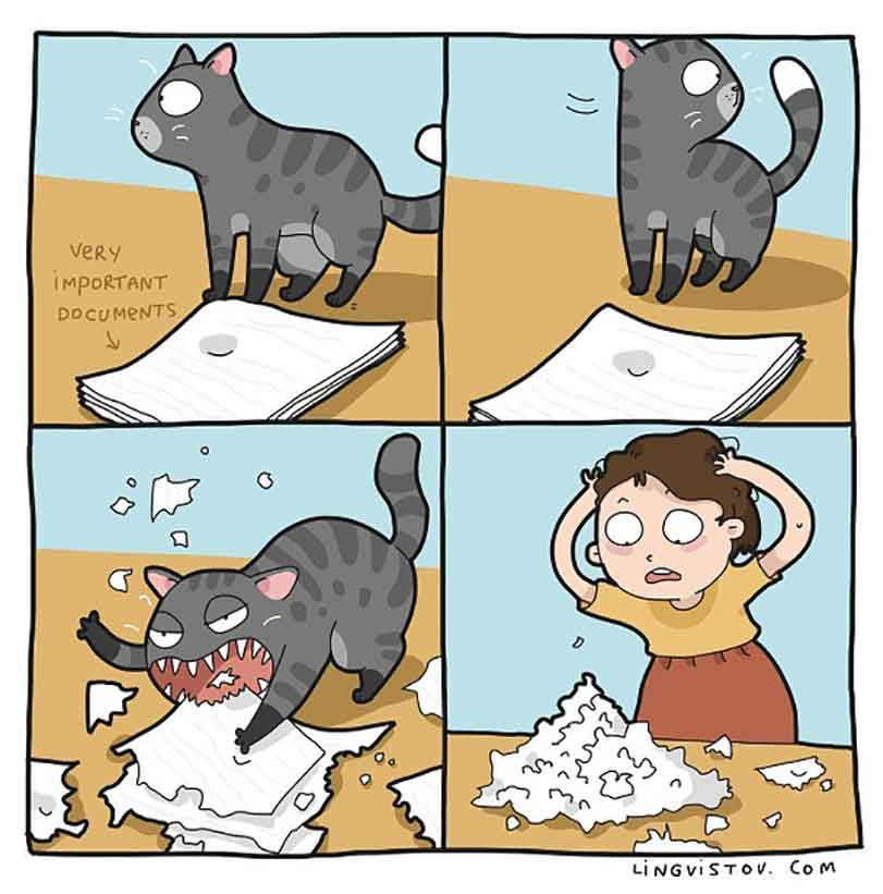 Landysh et Asia Lingvistov cats illustrations comics daily life