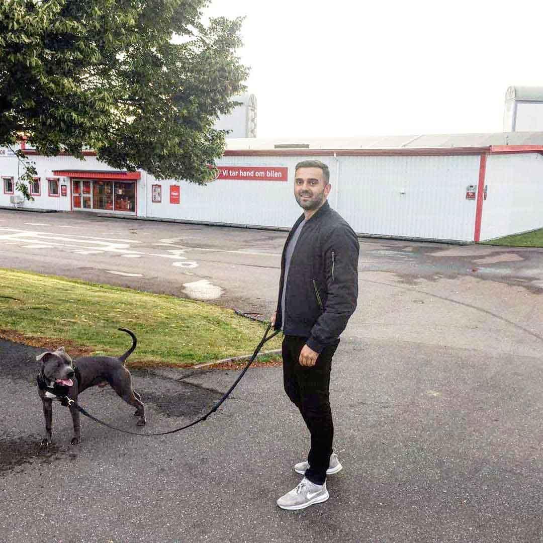 pitbull simba neighbor Arjanit Mehana Sweden