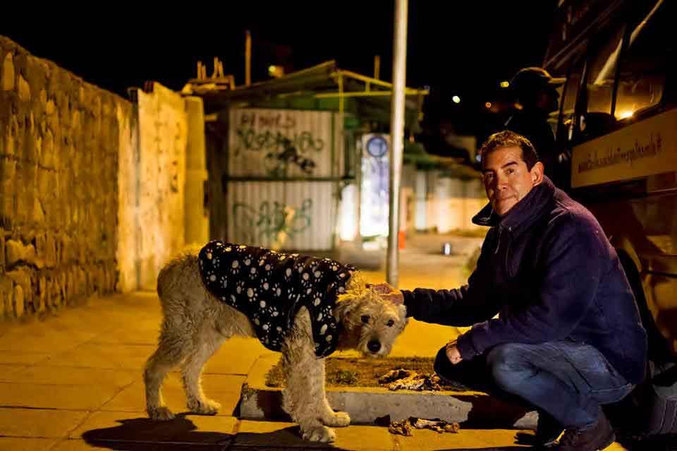 Fernando man resigns work care stray dogs