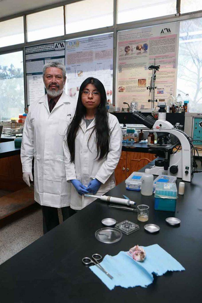 Mexican student Contraceptive Croquettes