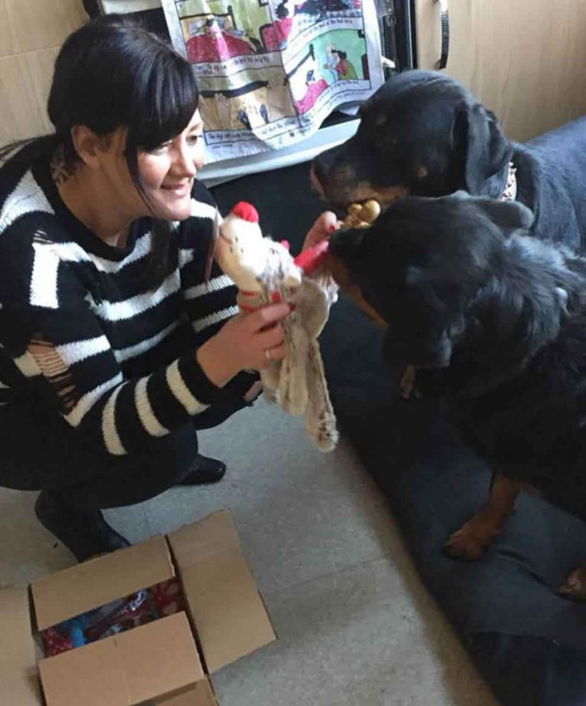 Nicola Coyle retired nurse hospice abandoned  dogs