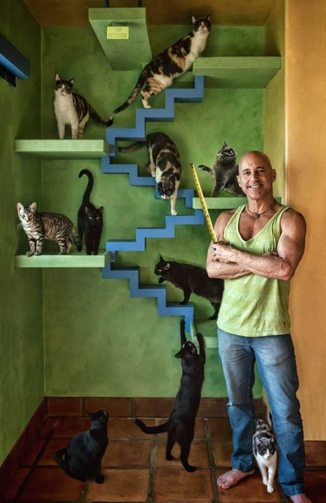 Peter Cohen man home cat paradise