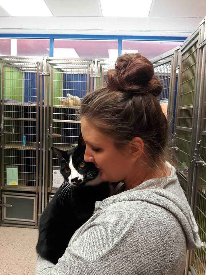 Zorro cat refuge embraces hugs everyone