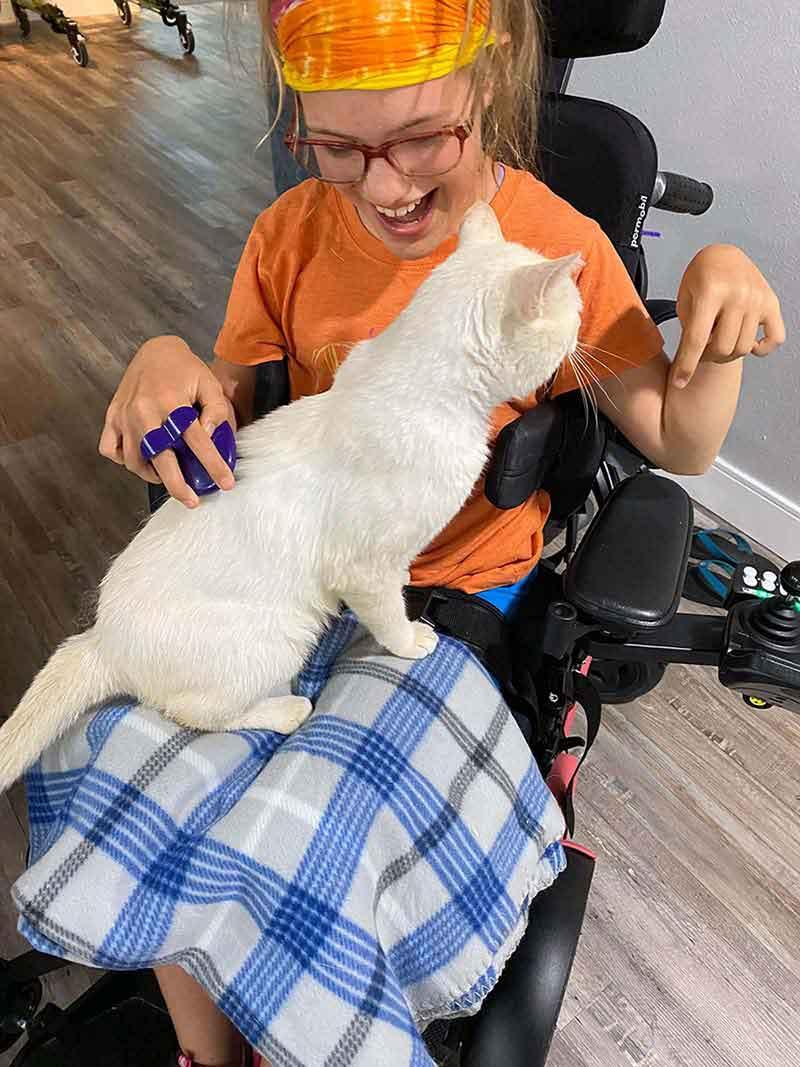 cat jump lap girl wheelchair