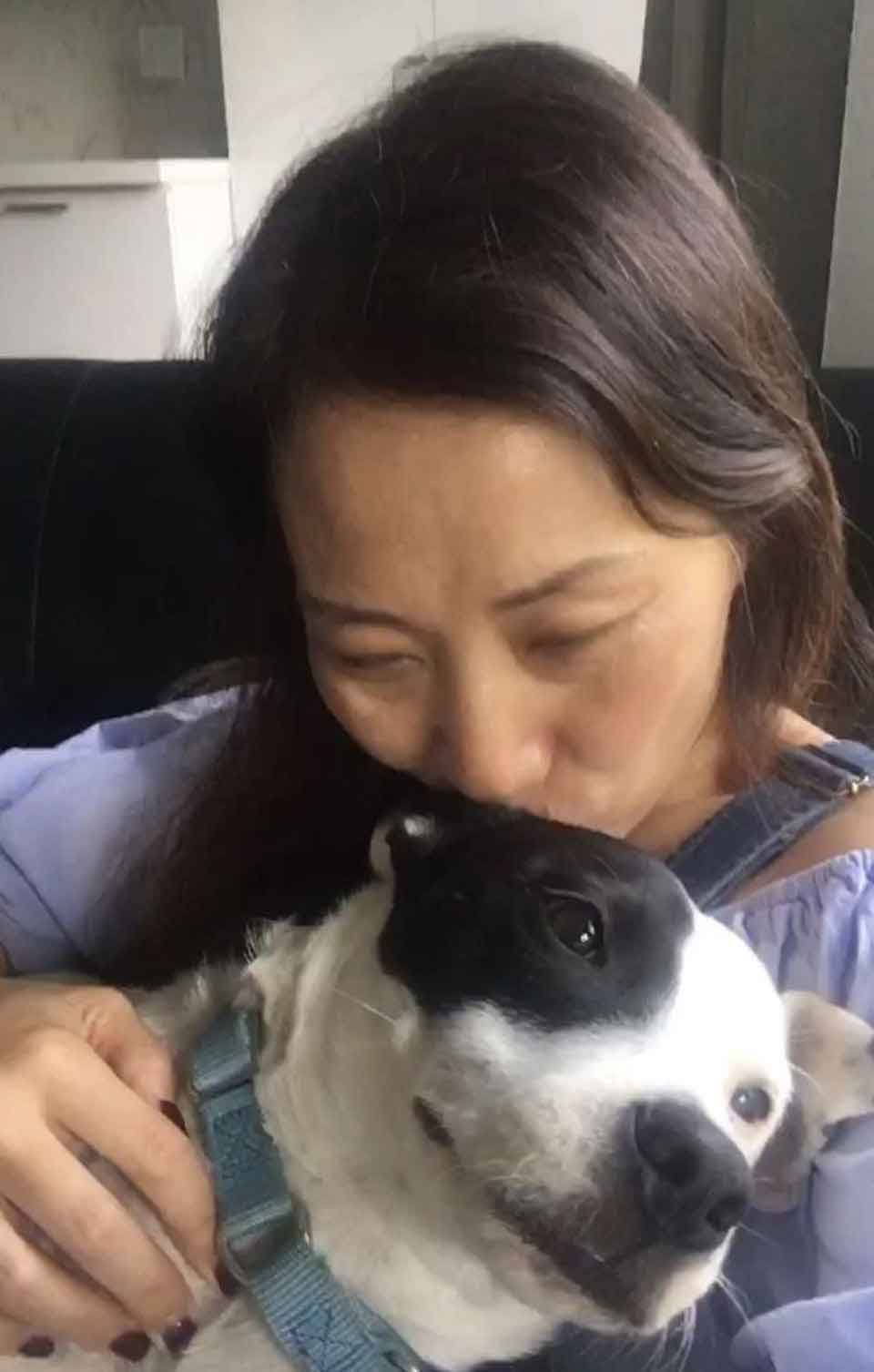 scared woman dogs adopts puppy inseparable