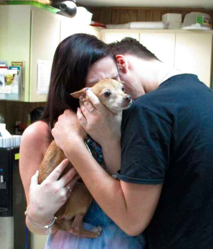 Alex dog reunites family after six years