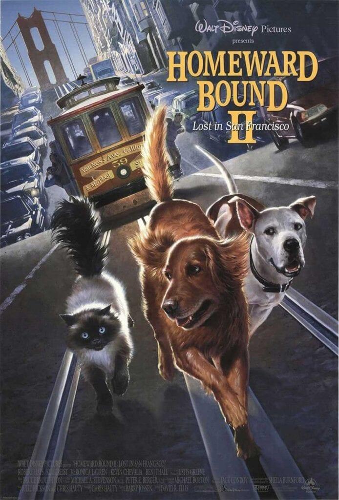 Cat Movies Homeward Bound 2 Lost in San Francisco
