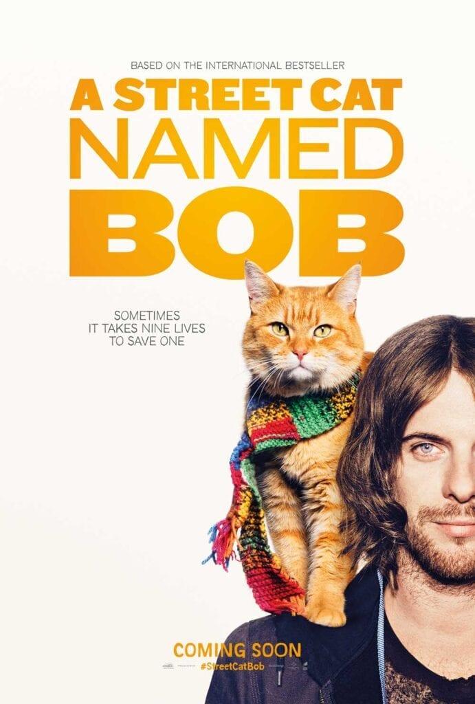 Cat Movies Street cat named Bob