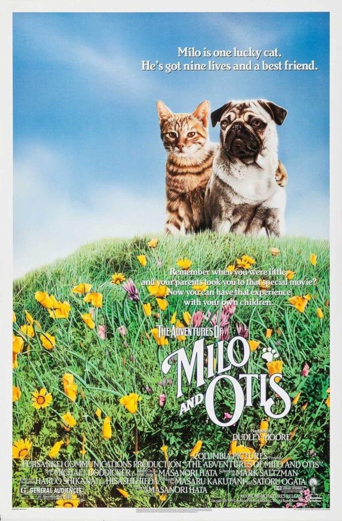 Cat Movies The Adventures of Milo and Otis