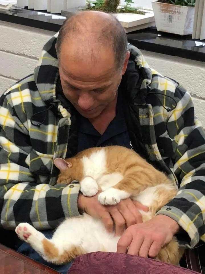 Jacque lap cat hugs finds home