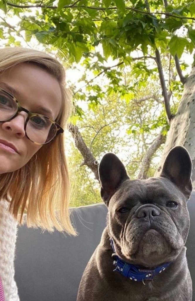 Reese Witherspoon dog Pepper