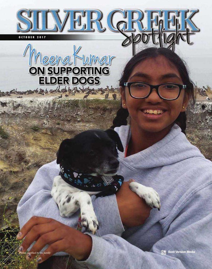 teen senior dogs adoption