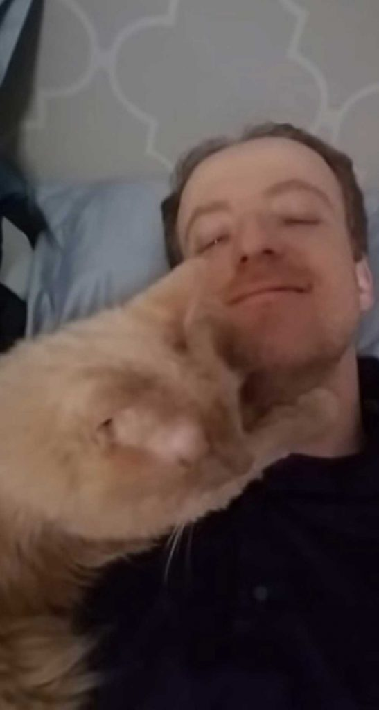 Huggs Rescue Cat Thanks Every Day Hugs