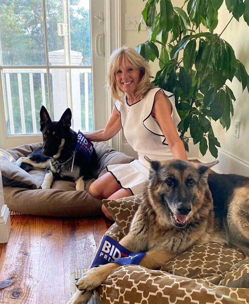 Major Joe Biden Dog