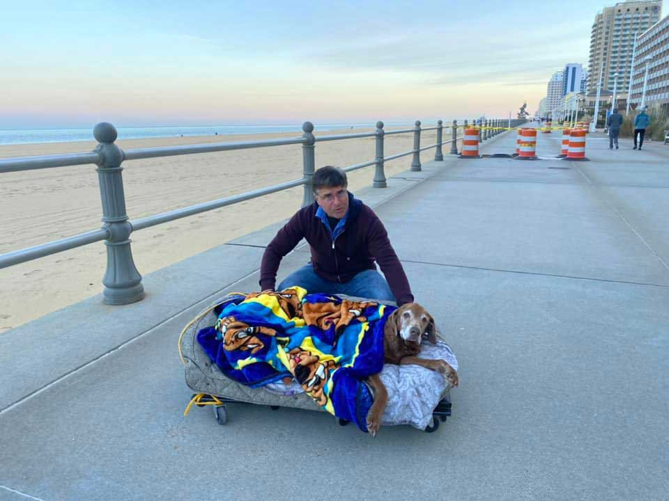 man builds mobile bed dog 16 years