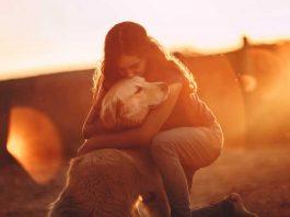 Dog Breeds for Emotional Support