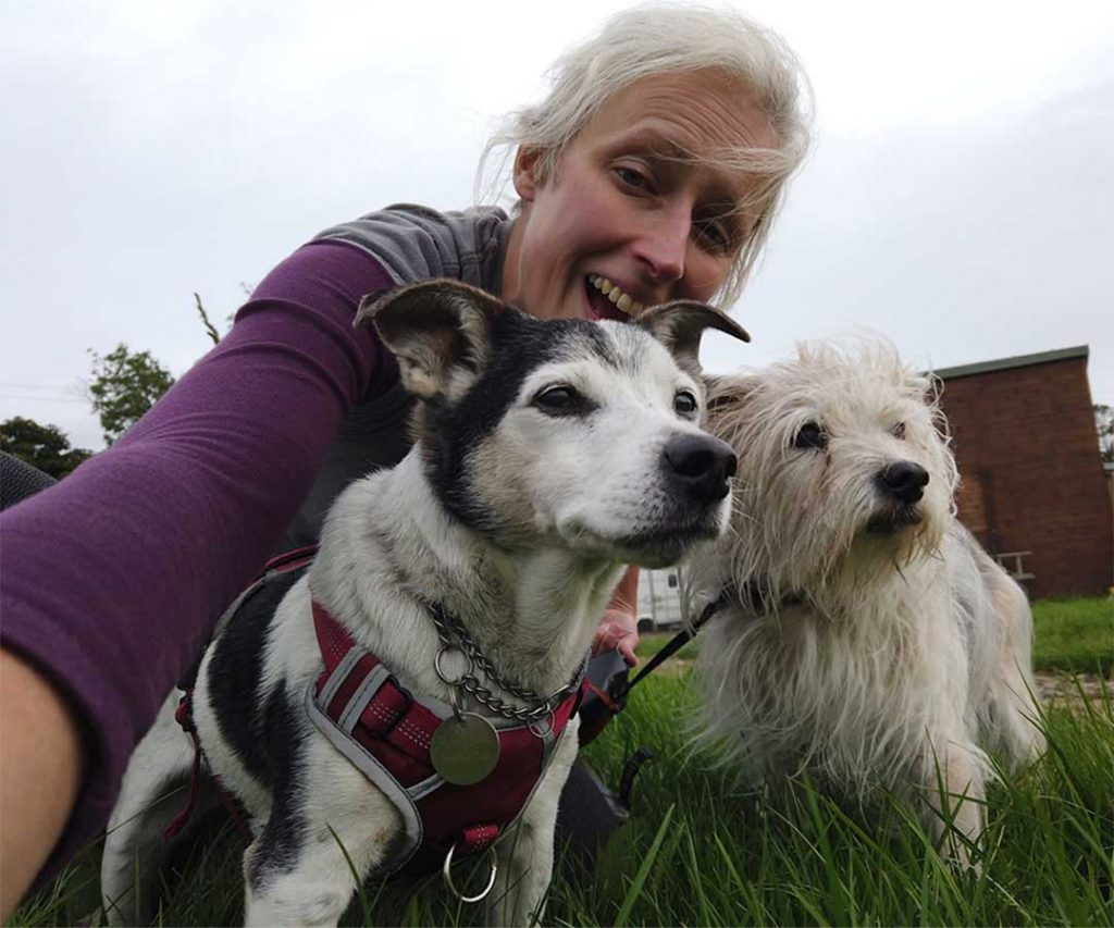 First Hospice Senior Dogs Spend last Days