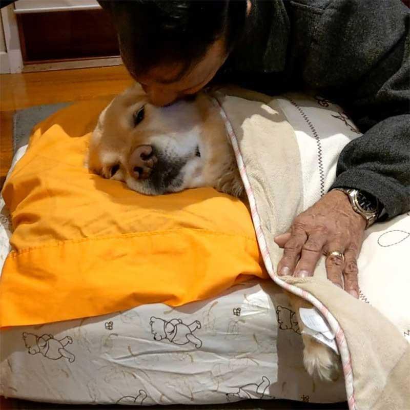 dad didnt want dog tucks nap