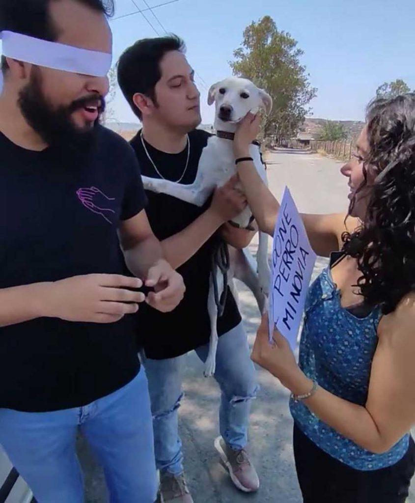 woman leaves boyfriend abandoning dog not pubered dog