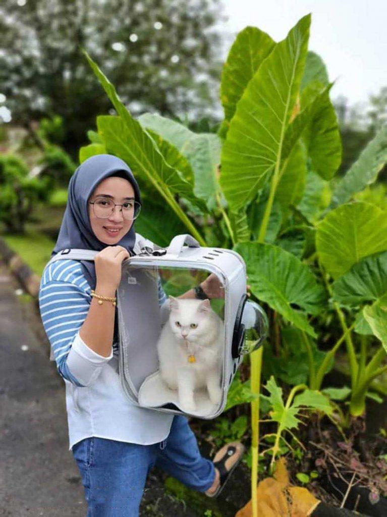woman saves kitten streets beautiful transformation