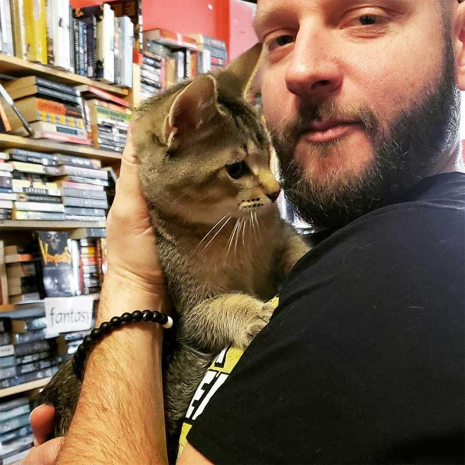 cats roam library to be adopted
