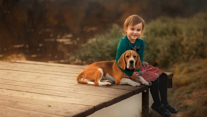 Best dogs kids