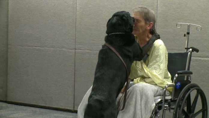 man risks life save dog